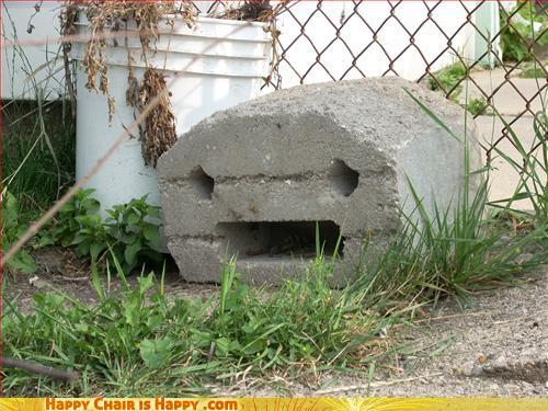Objects With Faces - Just Realized He Is Just Another Brick In The Fence