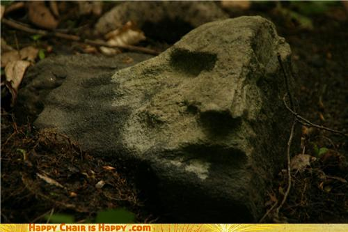 Objects With Faces - Easter Island Heads Were Grown, Not Made
