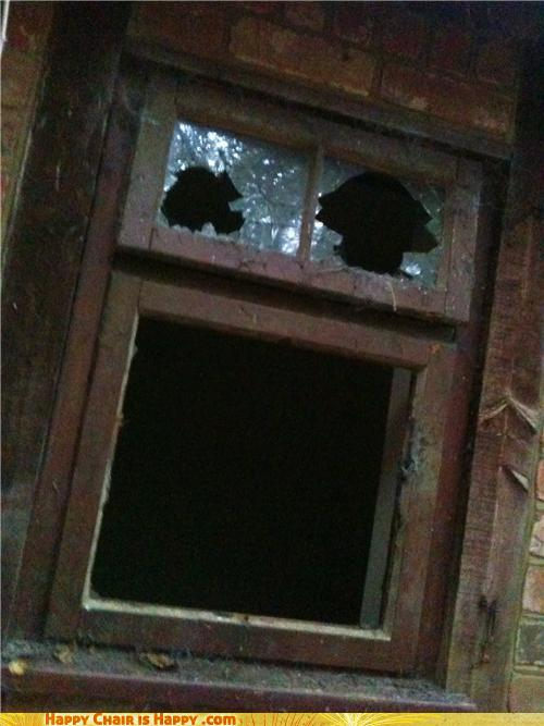 Objects With Faces-Smashed Window Can't Believe You'd Put A Brick Through Him