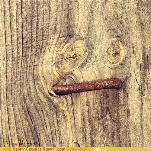 Objects With Faces-Kinky Tree is Kinky