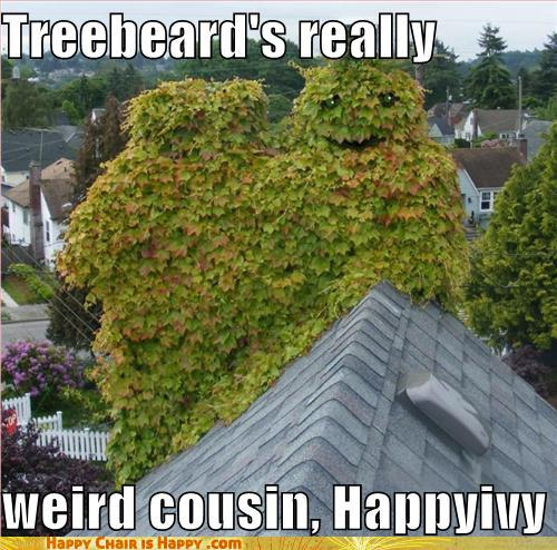 Objects With Faces-Treebeard's Really Weird Cousin, Happy Ivy