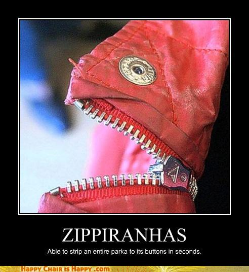 Objects With Faces-ZIPPIRANHAS