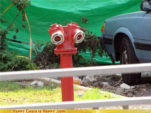 Objects With Faces-Sad Hydrant is Sad