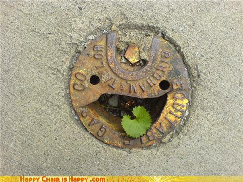 Objects With Faces-Delighted Drain Will Happily Accept Your Dirty Water