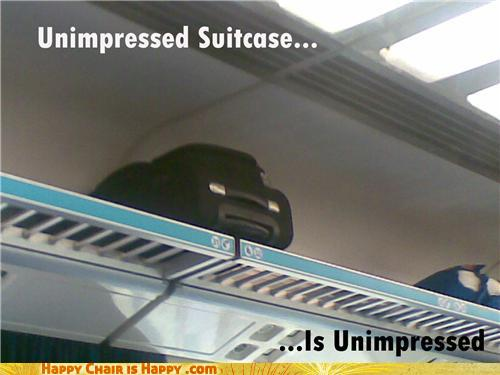 Objects With Faces-Unimpressed Suitcase Is Unimpressed