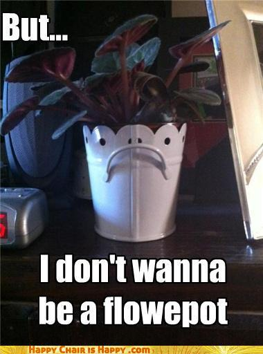 Objects With Faces-But... I Don't Wanna Be a Flower Pot!
