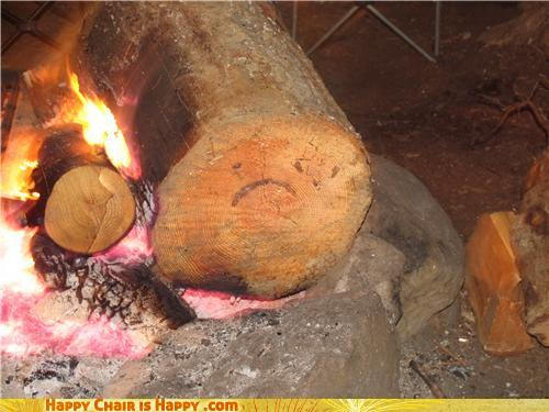 Objects With Faces-Unhappy Log Doesn't Even Like Chestnuts!