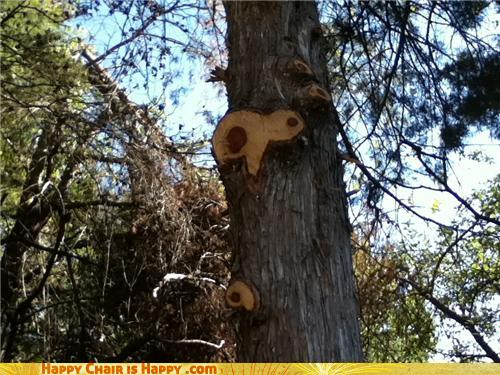 Objects With Faces-Shocked Tree Is Gonna Be Scarred For Life