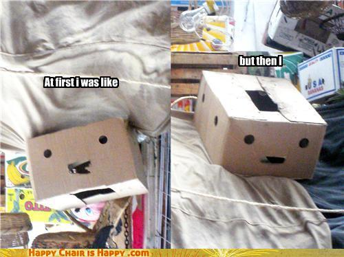 Objects With Faces-At first i was like