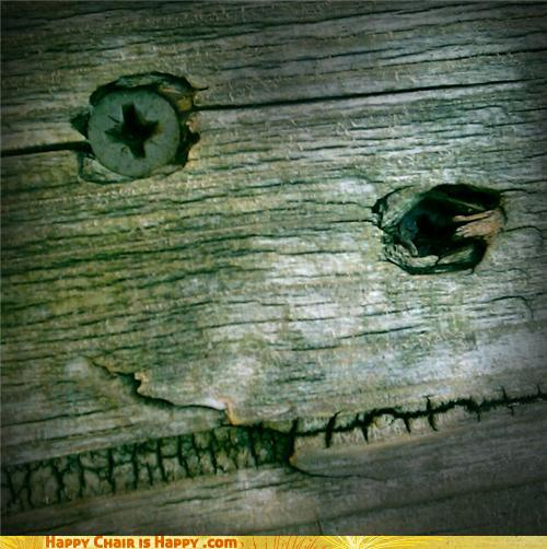 Objects With Faces-Spooky Bench is Friendly, Honest!