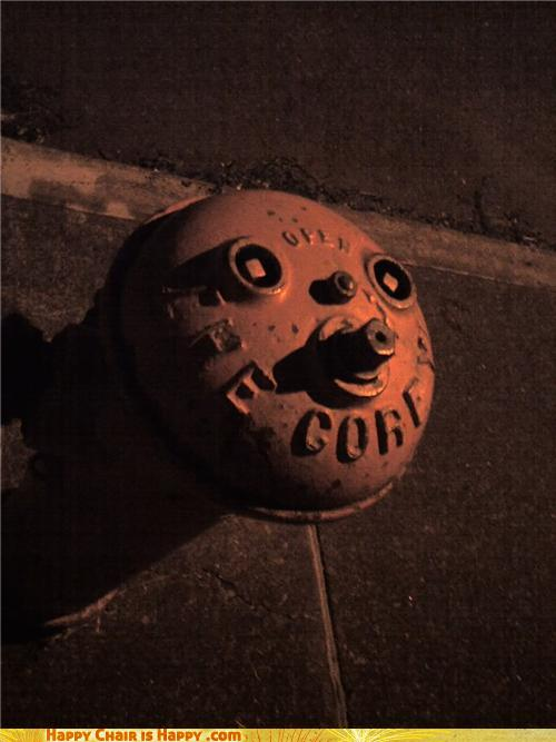 Objects With Faces-Contemplative Hydrant