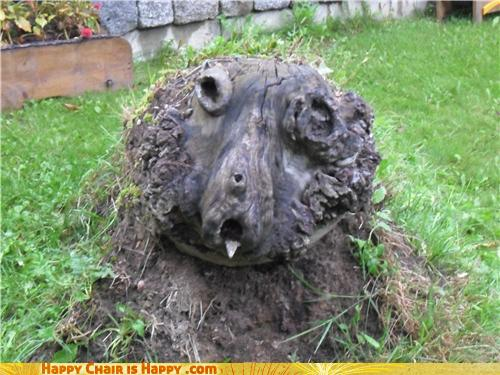 Objects With Faces-Hypochondriac Stump is Plagued by Illness