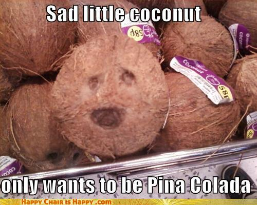 objects with faces-Sad Little Coconut Only Wants One Thing...